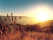 sunrise motivates