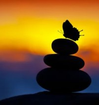 rocks-butterfly-sunset